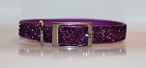 Purple Passion Glitter Glamour Dog Collar 16 inch