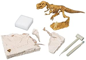 Mind Crafts Boy Scouts of America Paleontology Activity Kit