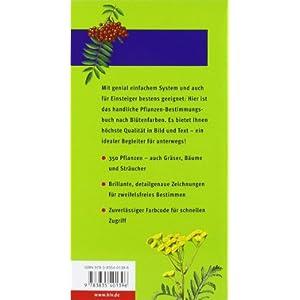 Der BLV Taschenführer Pflanzen: Über 350 Blumen, Gräser, Bäume und Sträucher