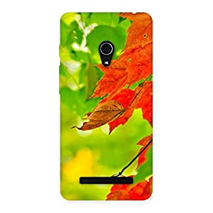Enticing Leaf Multicolor Back Case Cover for Zenfone 5