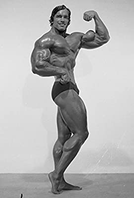 Arnold Schwarzenegger Inspiration Bodybuilding poster 36 inch x 24 inch / 200 inch x 13 inch