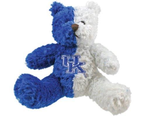 NCAA Kentucky Wildcats #1 Fan Bear