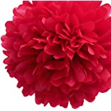 Dress My Cupcake 5-Inch Red Tissue Paper Pom Poms, Christmas Decorations/Christmas Arts and Crafts, Set of 8