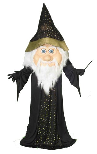 Forum Novelties Men's Oversized Wizard Costume