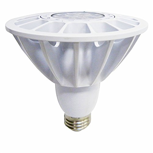 Magic Lighting Inc PAR38 LED Light Bulb 18W 1000