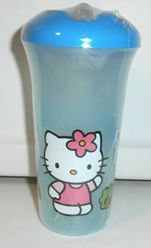Glass Sippy Cup With Straw