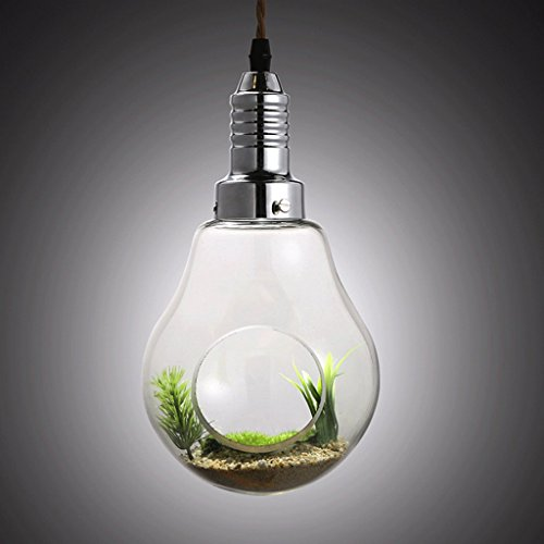 Creative Glass Vase Great American Plant Bulb Plants Garden Decoration Lighting Chandelier Lighting Restaurant Personality