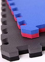 "IncStores - 1"" MMA Interlocking Foam Tiles (Black/Grey, 10 Tiles) - Perfect for martial arts, lightweight home gyms, p90x, Insanity, gymnastics, yoga, cardio, aerobic, and plyometric exercises"