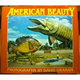 American Beauty (A New Images Book)