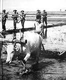China, Burma, India (World War II)