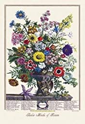 Paper poster printed on 20 x 30 stock. Twelve Months of Flowers