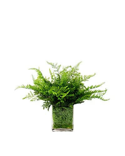 Creative Displays Bracken Fern Water Vase, Green
