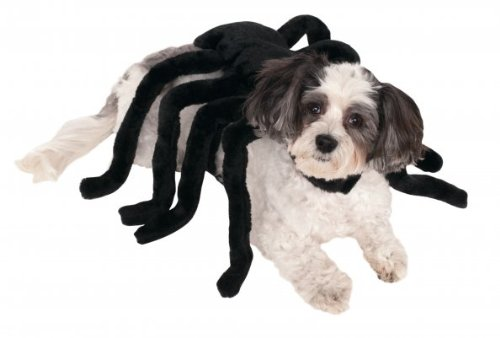 Rubies Costume Company Pet Spider Harness, X-Large