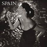 She Haunts My Dreams [Vinyl LP]