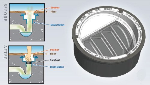 inch in floor drain trap seal sureseal hardware plumbing traps