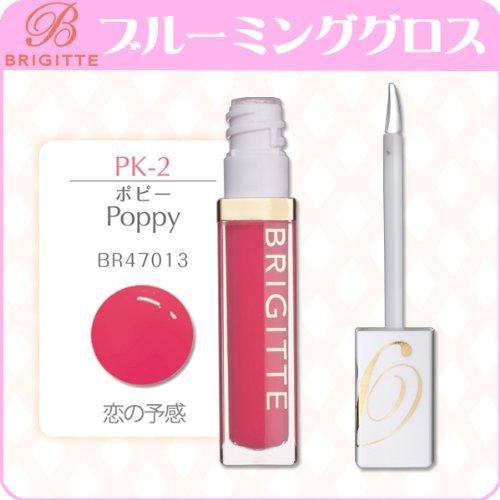 ブルーミング グロス PK2 BR47013