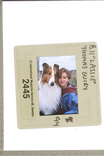 slides-photo-of-thomas-guiry-in-lassie