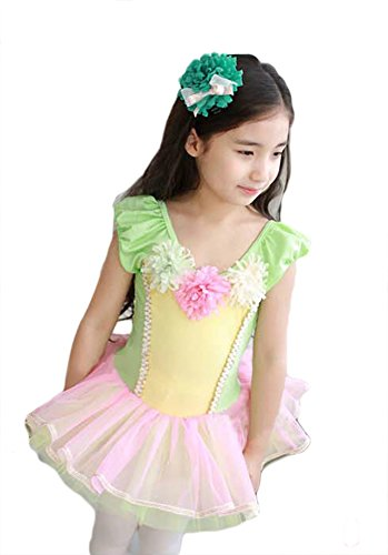 AveryDance Girl's Short Sleeve Ballet Dance Costume Tutu Princess Dress