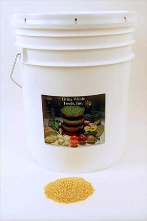 Organic Hulled Millet Seeds - 35 Lbs - Cereal Grain - Make Millet Beer - Grind Millet Flour- Bird Seed
