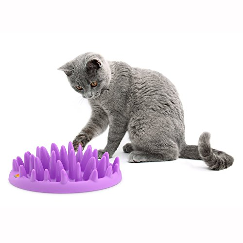 Northmate Catch Interactive Feeder for Cats (Slow Cat Feeder compare prices)
