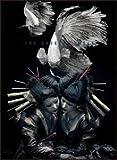 the GazettE LIVE TOUR 12-13【DIVISION】FINAL MELT LIVE AT 03.10 SAITAMA SUPER ARENA(初回生産限定盤) [DVD] / the GazettE (出演)