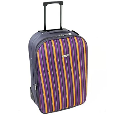 Medium 23'' Lightweight Expandable Suitcase (Stripes Charcoal/Orange)