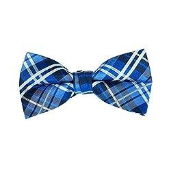 Briggs Blue Bow Tie