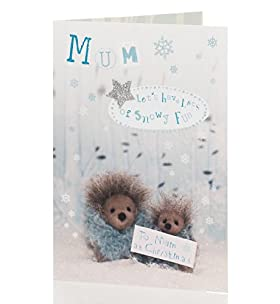 Cute Hedgehogs Christmas Card