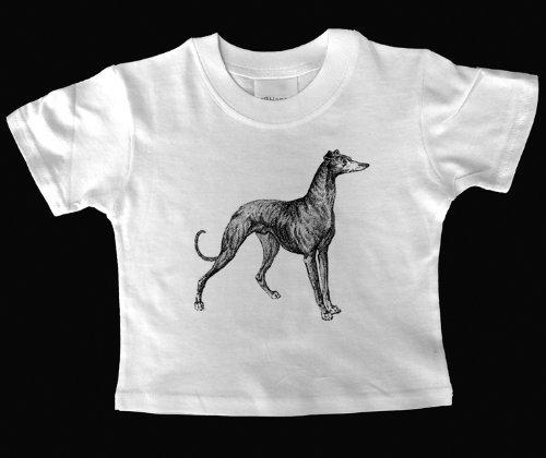 greyhound-bebe-t-shirt-talla18-23-mos