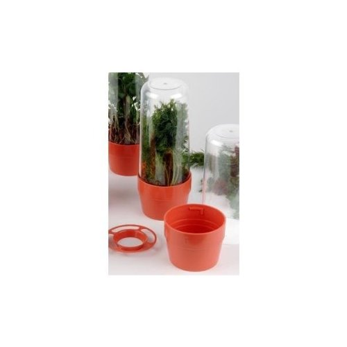 Herb Saver Counter Display (9 Pieces)