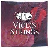 Hallstatt ハルシュタット ヴァイオリン弦 セット HV-1000