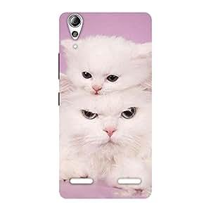 Gorgeous Kitten Family Back Case Cover for Lenovo A6000 Plus
