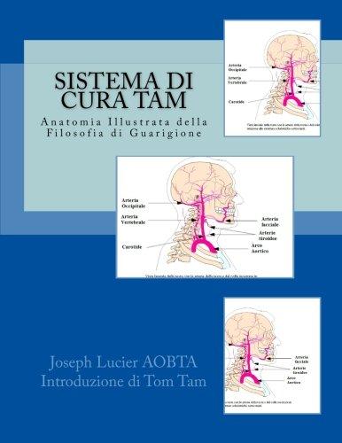 sistema-di-cura-tam-tam-healing-system-anatomia-illustrata-della-filosofia-di-guarigione