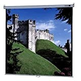 Da-Lite Deluxe Model B Manual Wall and Ceiling Projection Screen