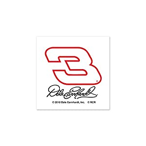 Dale Earnhardt 3 Logo on unfinished business