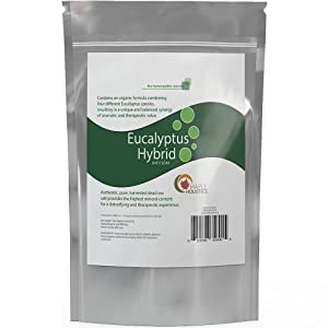 Pure Dead Sea Salt with Eucalyptus for Men & Women - Four Different Pure Eucalyptus Species Synergy for Aromatherapy - Authentic Dead Sea Salt From Israel -Highest Grade Potency for Relaxation - Most Therapeutic and Minerally-rich Eucalyptus Bath Soak Available - 15% Epsom Salt for Muscle Aches and Sprains