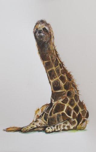 Amazon.com Art: Social Media Generated Hybrid: Sloth/Giraffe
