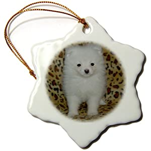 3dRose LLC orn_15767_1 White Pomeranian Puppy Snowflake Porcelain Hanging Ornament, 3-Inch