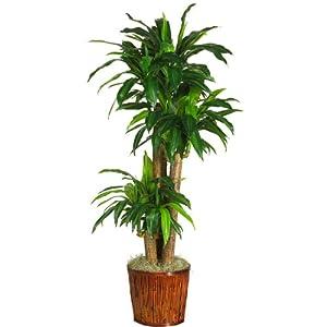 """56/"""" PALM ARTIFICIAL SILK TREE PLANT ARRANGEMENT DRACENEA TROPICAL DECOR BUSH IVY"""