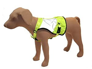 Stunt Puppy Go Dog Glo High Visibility Dog Vest, XS/S