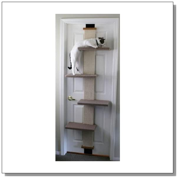 where to find wall shelves for cats the adventures of. Black Bedroom Furniture Sets. Home Design Ideas