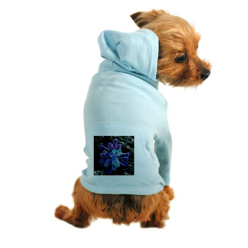 Cafepress Calcium Phosphate Crystal, Sem - Dog Hoodie - S Light Blue [Misc.]