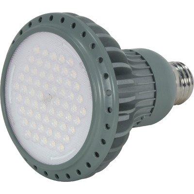 Kolourone Led Par30 Lamp In Gray Beam Angle: 40°, Color Temperature: 5000K, Wattage: 7 Watt