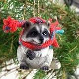 Conversation Concepts Raccoon Original Ornament