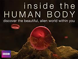 Inside the Human Body - Season 1