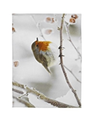 Photographic Robin Tea Towel