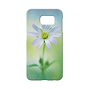 BLUEDIO Designer 3D Printed Back case cover for Samsung Galaxy S6 - G4435