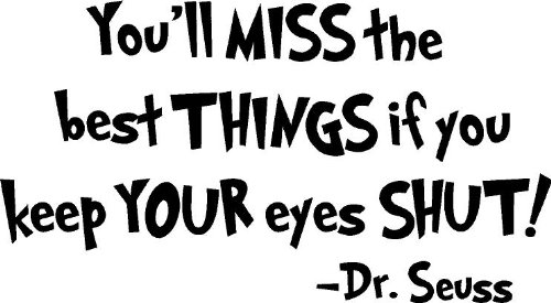 Dr Seuss You'll miss the best things if you keep your eyes shut wall art wall sayings