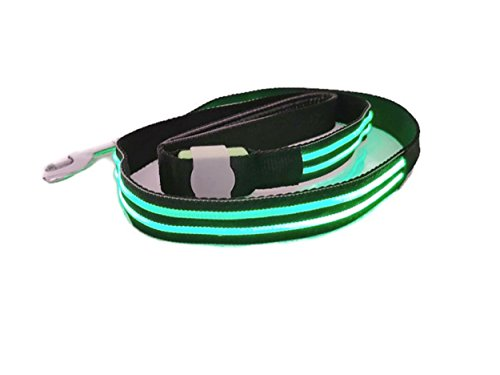 pet-basement-4-foot-dog-lead-with-brilliant-led-safety-lights-green