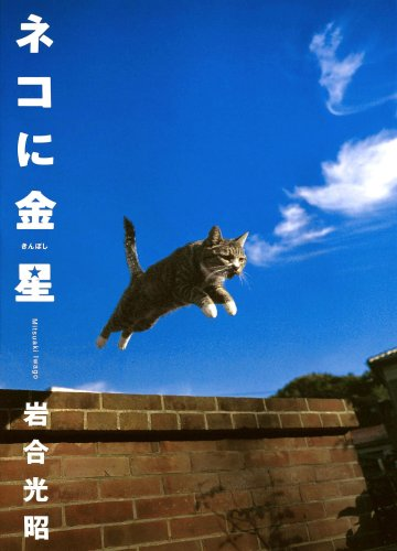 ネコに金星—ニッポンの猫写真集